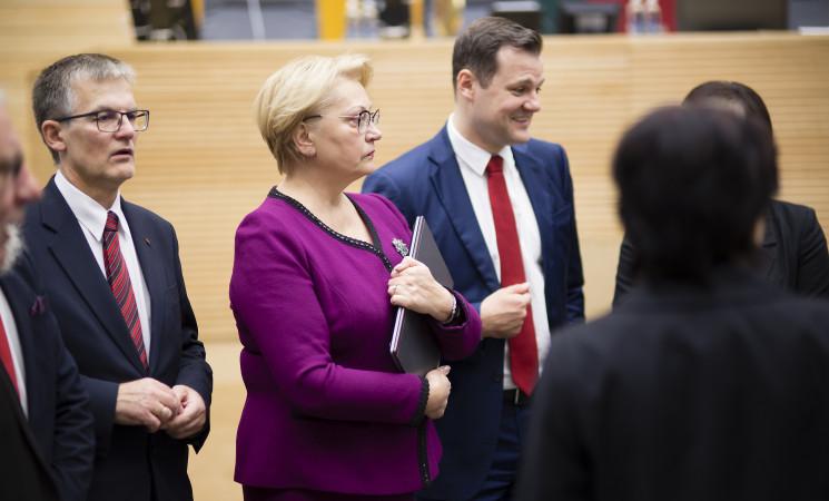 Siūloma komisija dėl I. Rozovos, antraip Seimo nariai tirtų patys save