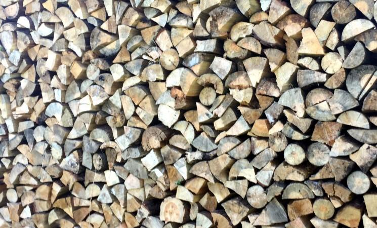 Kodėl Valstybinių miškų urėdija pelnosi brangindama malkas gyventojams?