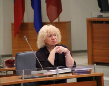 LSDP kultūros komiteto posėdis